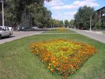 Рубцовск улица Громова