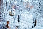 Рубцовск Зимнее утро